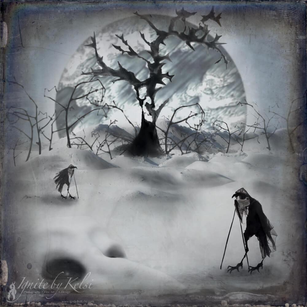 BIrdwalkers by Kelsi Adams